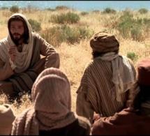 Homélie pour le 7e dimanche du temps ordinaire (Année A) « Comme votre Père céleste... »