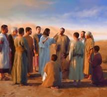Homélie pour le 12e dimanche du temps ordinaire (Année A) « Ne craignez pas »