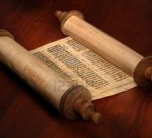 Homélie pour le 2e dimanche de l'Avent Année B « L'Évangile, une Bonne Nouvelle »