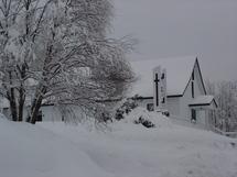 Homélie pour Noël : « Le chemin des bergers»