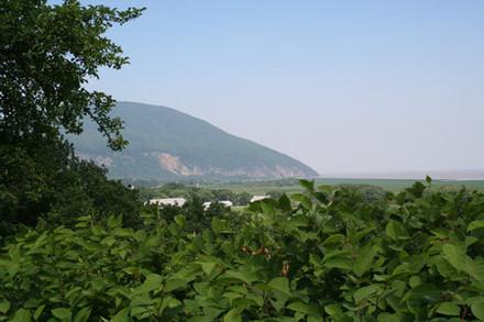 Vue du Cap Tourmente du Fort Thomassin